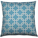 JinStyles Cotton Canvas Trellis Chain Accent Decorative Throw Pillow Cover (Carolina Blue & White, Square, 1 Cover for 18 x 18 Inserts)