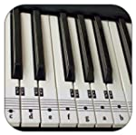 Beginners Piano & Keyboard Music Note...