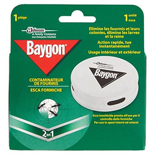 baygon-esca-formiche