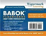 BABOK Study Flashcards