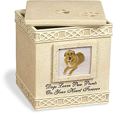 Angel Star 6-Inch Pet Urn for Dog