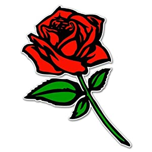 "Amazon.com: Red Rose car bumper sticker window decal 5"" x 3"