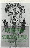 img - for Baudelaire and Schizoanalysis: The Socio-Poetics of Modernism (Cambridge Studies in French) book / textbook / text book