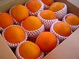 フルーツyamakiti オーストラリア産 ネーブルオレンジ 大玉24個 ランキングお取り寄せ