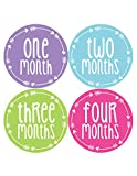 Months in Motion 1020 Baby Month Stickers Baby Girl Arrows Months 1-12 Monthly Age Sticker