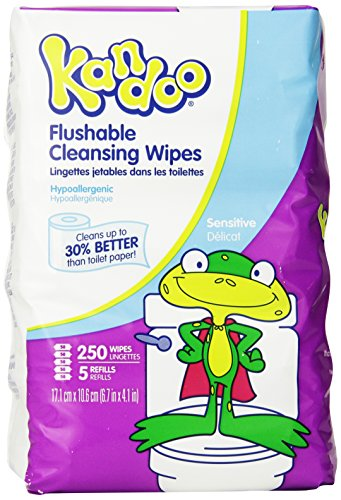 Kandoo Flushable Sensitive Wipes, 250 Count Refills, 4 Pack