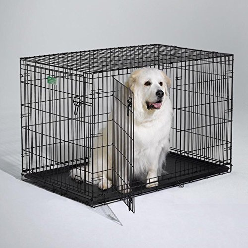 """Icrate Double-Door Dog Crate Size: X-Large - 48"""" L X 30"""" W X 33"""" H"""