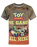 Official Toy Story Gang Sublimation Boy's T-Shirt