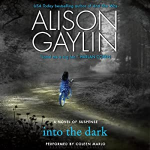 Into the Dark: A Novel of Suspense | [Alison Gaylin]