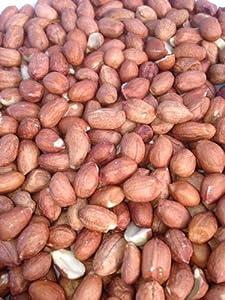 25kg Dawn Chorus Peanuts