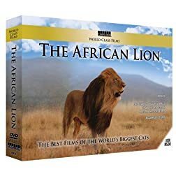 World Class Films: The African Lion