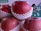 ★今度は青森産!驚きのビックサイズ「メガサンふじりんご」特大3キロ ランキングお取り寄せ