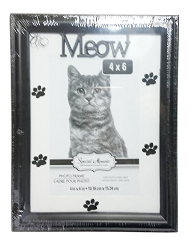 meow-pet-photo-frame-with-wall-mount-and-easel-back-kitty-cat-with-paw-prints