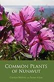 Common Plants of Nunavut