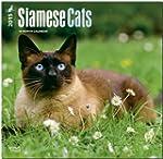 Siamese Cats 2015 Square 12x12