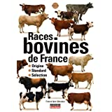 Races bovines de France : Origine, standard, sélection