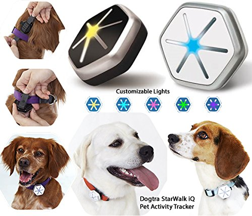 Starwalk Iq Pet Activity Tracker - Takes Monitoring The Health And Activities Of Your Dog Into The 21St Century (Black / Silver)