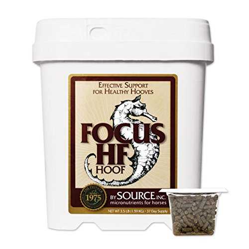 Focus Hf For Horses By Source