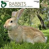 Kingfisher 365 Petcare Rabbits 2014 PetCare Pet & Wildlife Calendar
