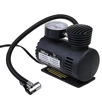 300 PSI 12 Volt DC Pumping Air Pumps Compressor portable