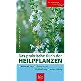 """Das praktische Buch der Heilpflanzen: Kennzeichen, Heilwirkung, Anwendung, Brauchtumvon """"Manfred Bocksch"""""""