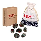 TGS Gems® Africa Bloodstone Chakra Stone Palm Stone Healing Crystals Reiki with One Pouch
