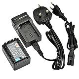 DSTE® VW-VBK180 Rechargeable Li-ion Battery + Charger DC106U for Panasonic HC-V10, HC-V100, HC-V100M, HC-V500, HC-V500M, HC-V700, HC-V700M, HDC-HS60, HDC-HS80, HDC-SD40, HDC-SD60, HDC-SD80, HDC-SD90 Digital Cameras