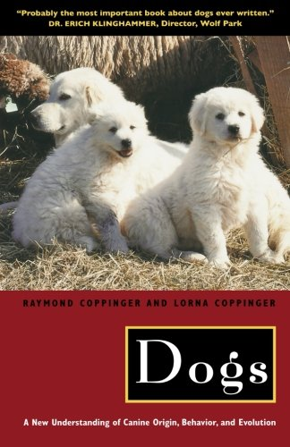 Dogs: A New Understanding of Canine Origin, Behavior and Evolution PDF
