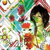 蜃気楼♪葵-168-