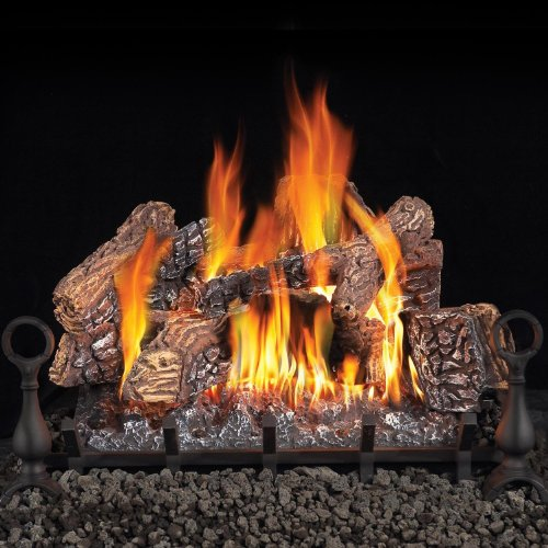 Napoleon GL30NE 30 Inch Vented Gas Log Set picture B00G9FS93K.jpg