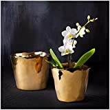 Two's Company Tozai Home Gold Planters, Set of 2