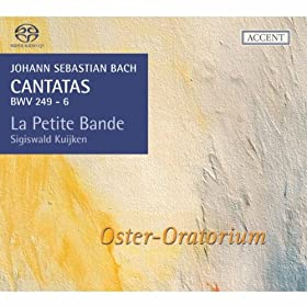 "Easter Oratorio, BWV 249: Recitative ""Indessen seufzen wir"""