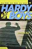 Boardwalk Bust (Hardy Boys: All New Undercover Brothers #3)