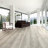 Designbelag Vinylboden Klick Planke Holzoptik E... 1 Paket (2,24 m² ...