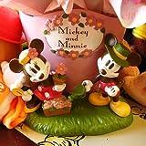 フラワーギフト 結婚記念日 ディズニー プリザーブドフラワー ミッキー ミニー ピンクのミッキー&ミニーのプリザーブドフラワー