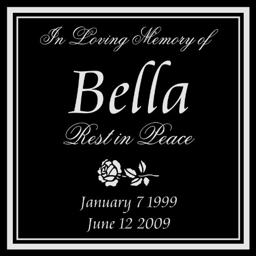Personalized Pet Dog Cat Memorial 12 X12 Engraved Black