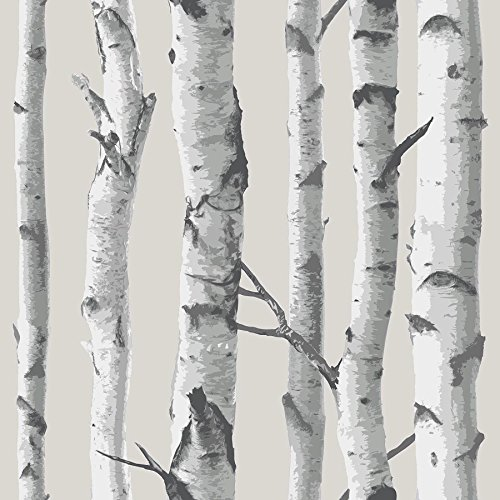 Birch Tree Peel And Stick Wallpaper (Decal Wallpaper compare prices)