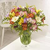 Sendabunch - Guernsey Flowers - 30 Mixed Guernsey Freesias by post inc Free Delivery