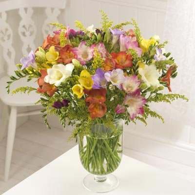 20 Guernsey Freesias - flowers by post
