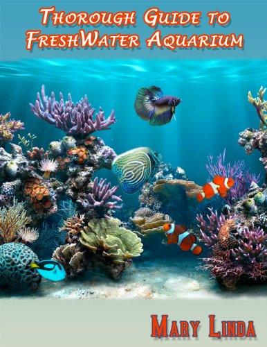 A Completely Thorough Guide to FreshWater Aquarium