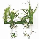 WALL/壁掛けグリーン 観葉植物 光触媒 造花 3Dアートフラワー ドラセナ 391A3040