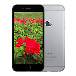 "Apple 16gb Iphone 6 A1586 4.7"" Inch Space Grey Factory Unlocked Lte 4g Cell Phone from Apple Computer"