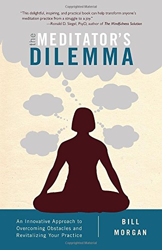 The Meditator's Dilemma: An Innovative Approach to Overcoming Obstacles and Revitalizing Your Practice