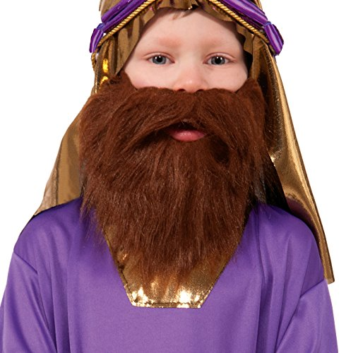 Forum Novelties Biblical Times Wiseman Child's Costume Beard
