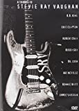 #9: A Tribute to Stevie Ray Vaughan