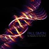 Paul Simon So Beautiful Or So What [VINYL]