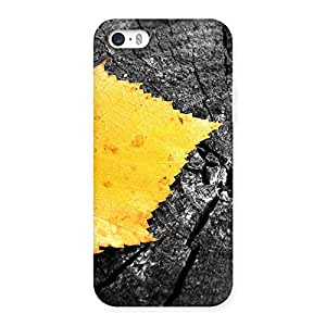 Special Leaf Lone Back Case Cover for iPhone 5 5S