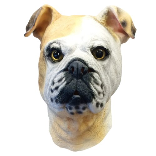 English Bulldog Costume Face Mask- Off the Wall Toys Kennel Club