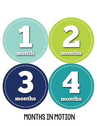 Months in Motion 060 Monthly Baby Stickers Baby Boy Month 1-12 Milestone Photo - 1