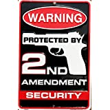 Tag City Novelty SP80063 Warning Protected By 2nd Amendment Security Metal Sign, (8 X 12 Inches) (Color: White With Red and Black Imprint, Tamaño: 8 X 12 inches)